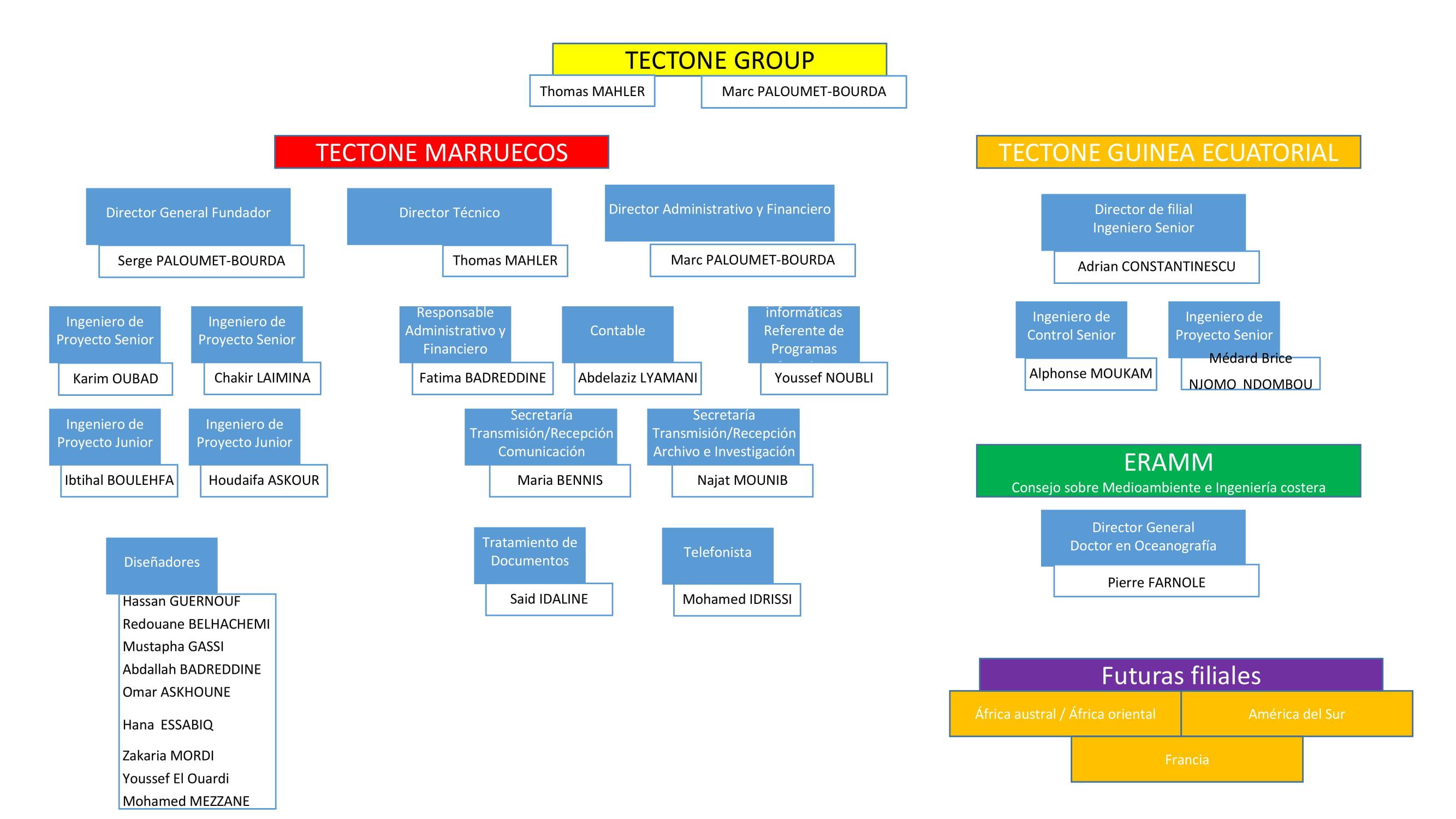 Tectone group equipo